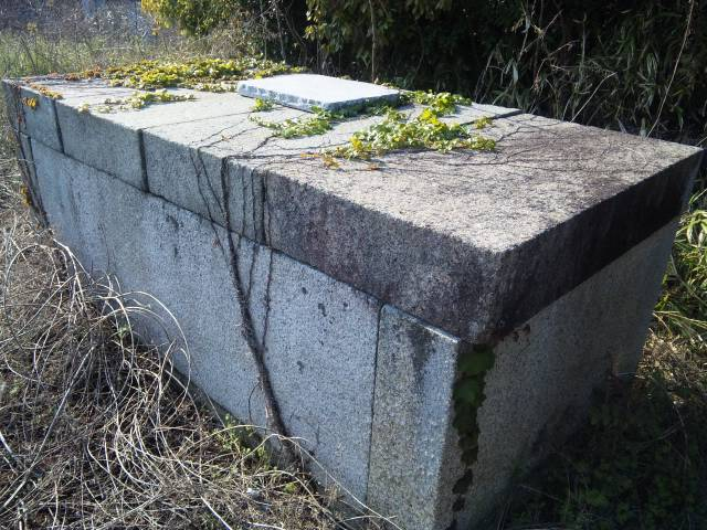 謎の石棺 (2)