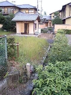 大光明寺陵陸軍石柱 (3)