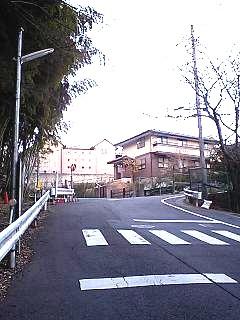 008 (4)