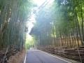 京都府道・大阪府道79号伏見柳谷高槻線 07 (6)