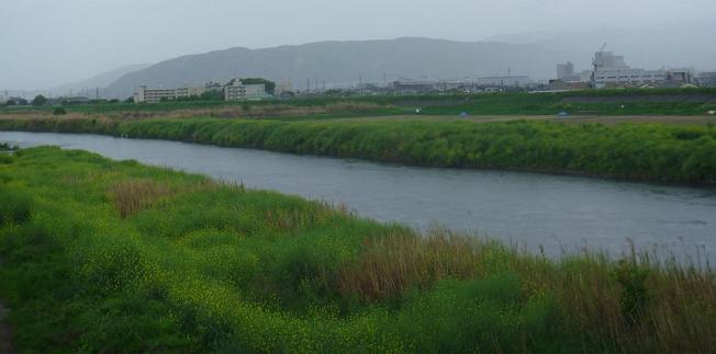草津の港(伏見・横大路)  (5)