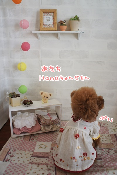 DSC09001.jpg