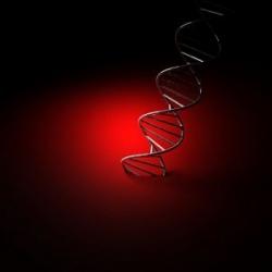 DNA000.jpg