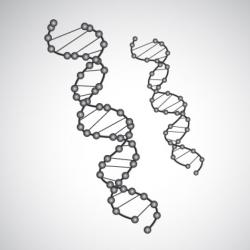 DNA003.jpg