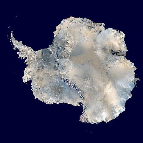 南極氷床4km下の氷底湖に多様な生命体 多くは全くの新種