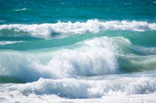 東原亜希さん 「神奈川...」 「海...」 「○○海岸...」 「波がこわい...」