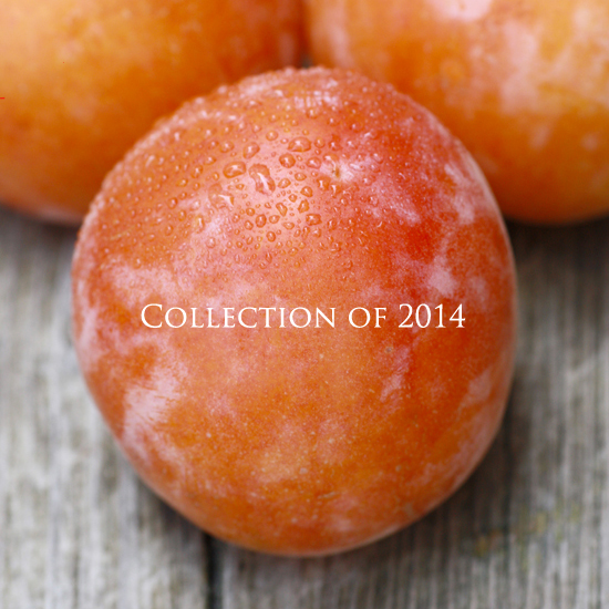 collectionof2014.jpg