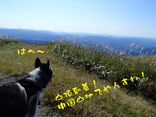 PA130470.jpg
