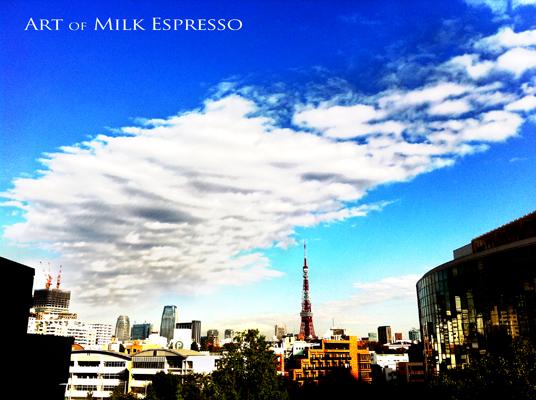 gyoeinomure_to_tokyotower.jpg