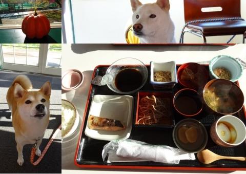 カーロ菅平 朝食 2 ココちゃんとてっつん