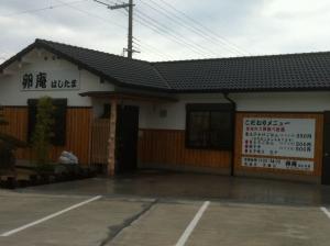 HashimotoHashitama_004_org.jpg
