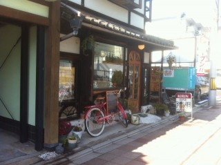 HigashiyamaPine_000_org.jpg