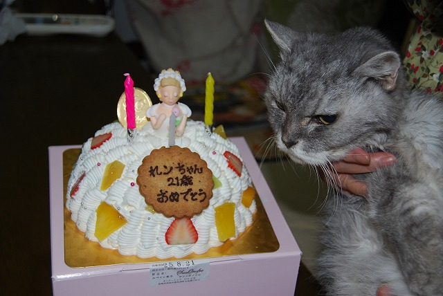 おたんじょーびケーキだよ