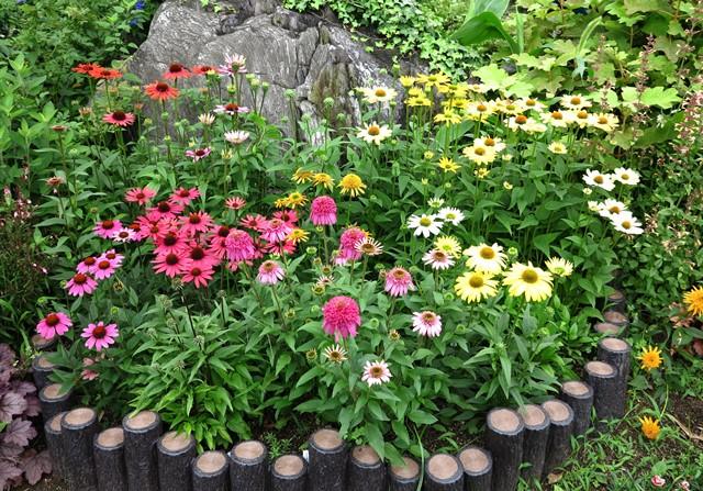 20130921初夏の庭