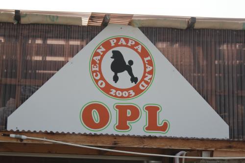 Ocean Papa Land