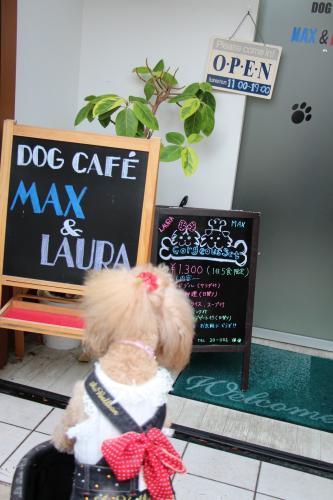 MAX&LAURA