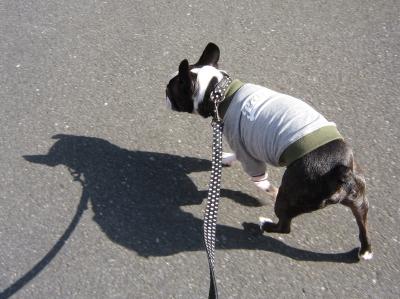届いた服を着て、ルンルン散歩!!