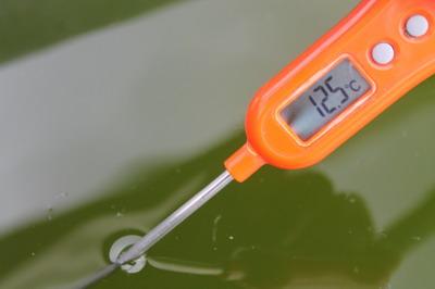 池12.5℃