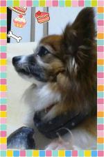 PicsPlay_1373977881483.jpg