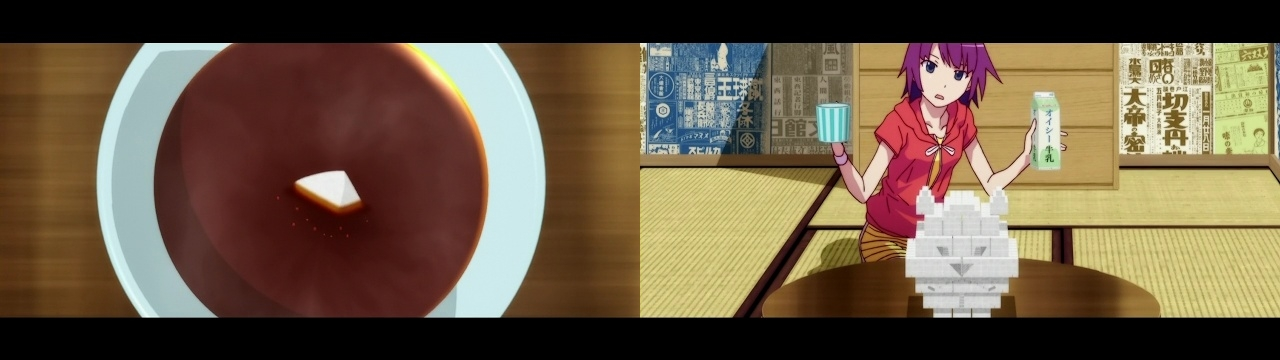 アニメ・漫画関係_猫物語(白)_20130721_02