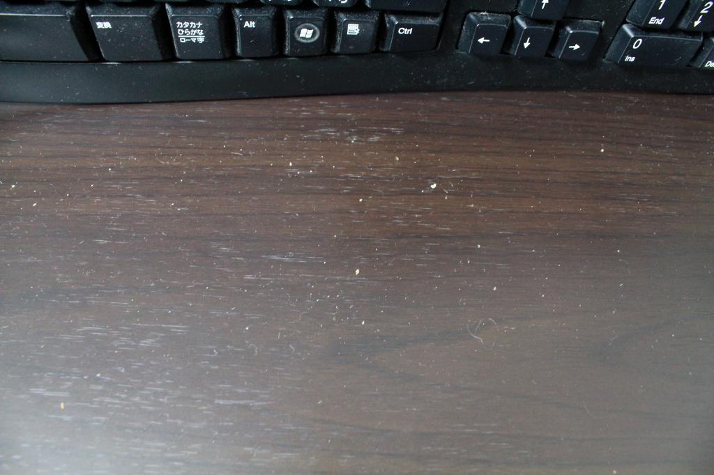 パピヨンの日記_20131020_キーボード掃除_03