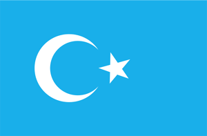 東トルキスタン亡命政府(East Turkistan)の旗