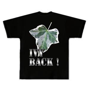 Ivy back !(アイビーバック!)