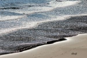 宇佐美海岸の波