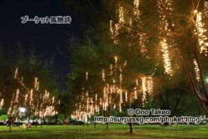 この記事「プーケット 夜のサパンヒン公園」の写真 (363-314)