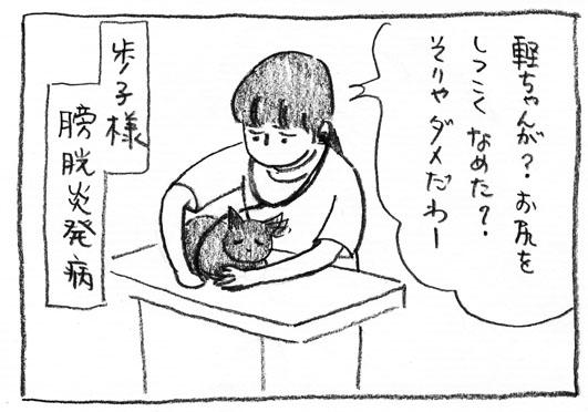 4_膀胱炎