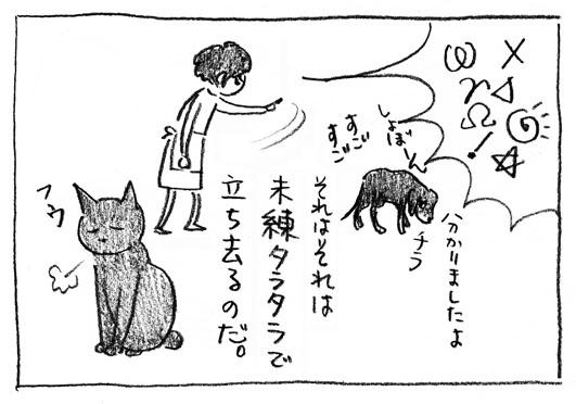 4_チラ見