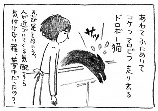 4_ドロボー猫