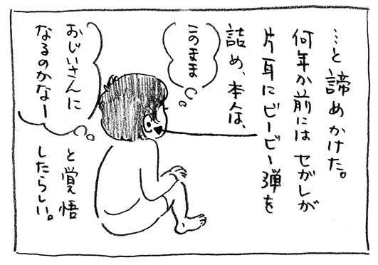 3_ビービー弾