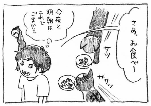 5_ごまかそ