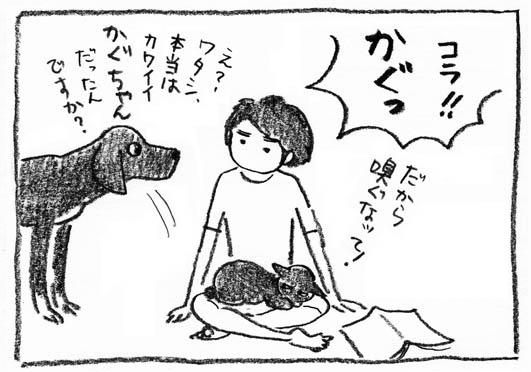 7_かぐっ