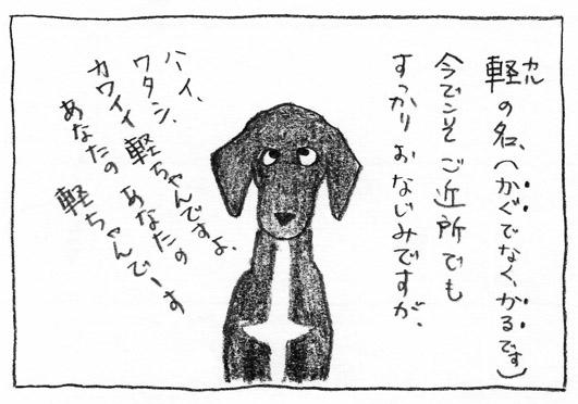 1_お馴染み