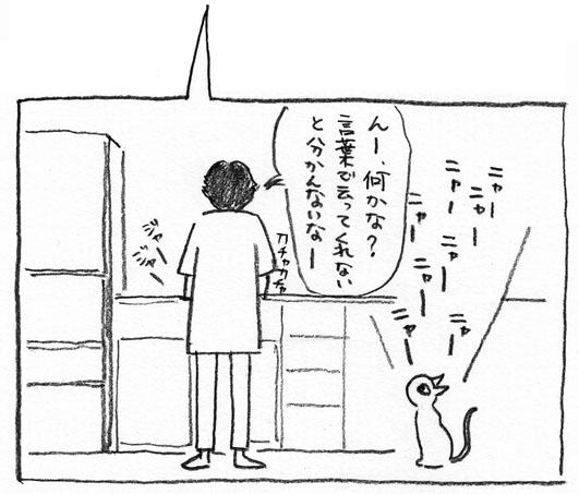 6_ニャーニャー