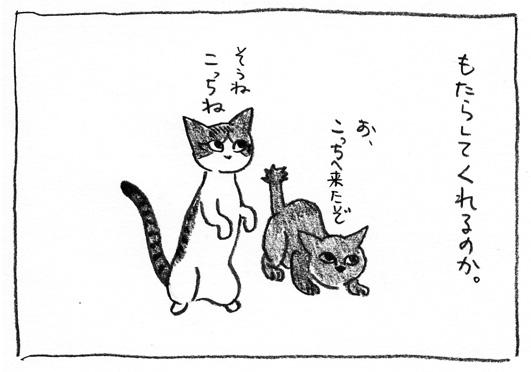 4_もたらす
