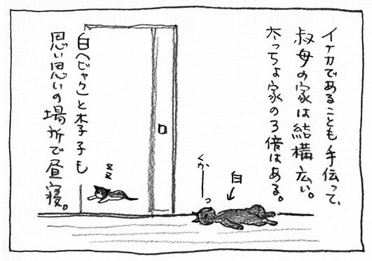 1_広い家