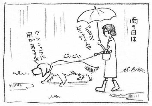3_雨降り