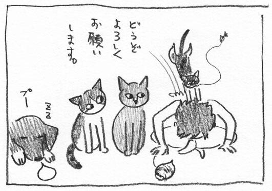 6_おじぎ