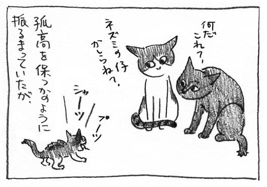 3_鼠の子