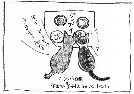 2_トロい李子