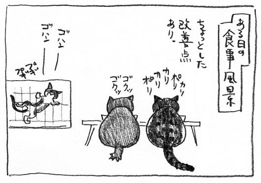 1_食事風景