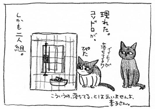 5_コソドロ