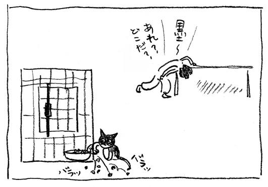 9_バラッ
