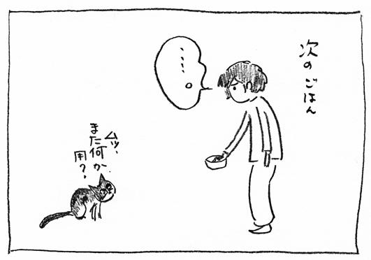 1_ごはん