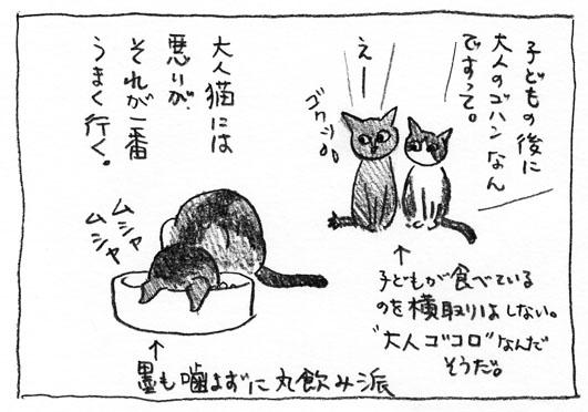 1_大人ゴコロ