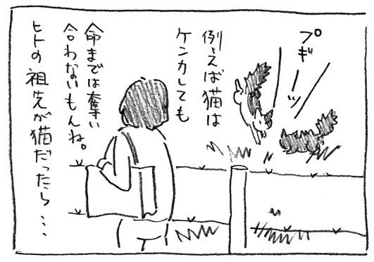 3_祖先が猫