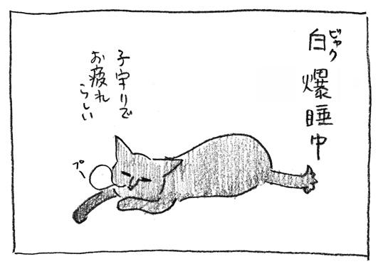 1_爆睡中